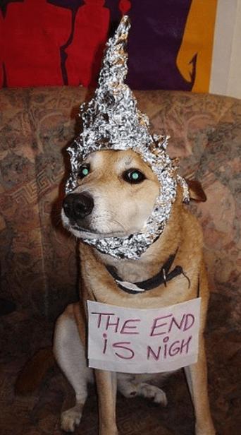 dog tin hat