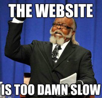 the website is too damn slow meme