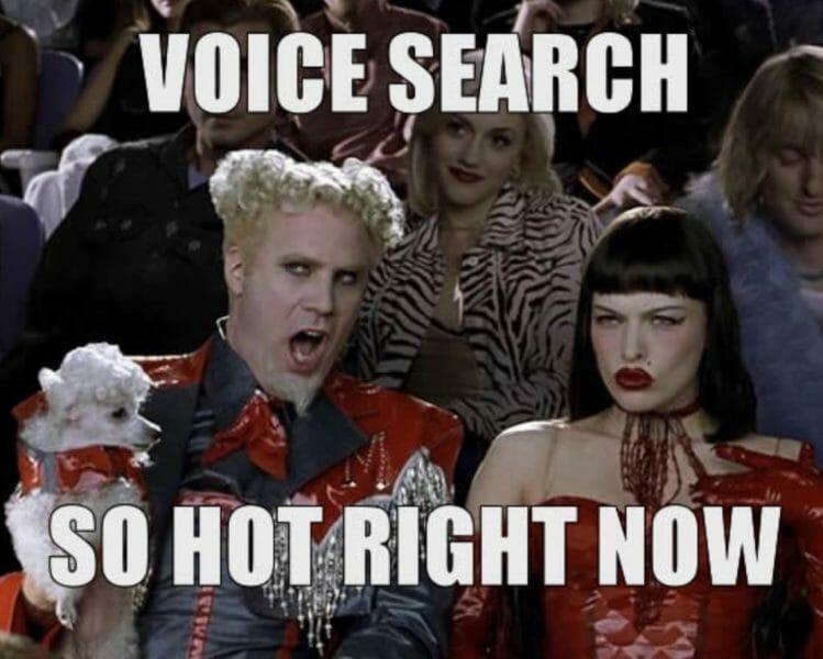 voice search so hot meme