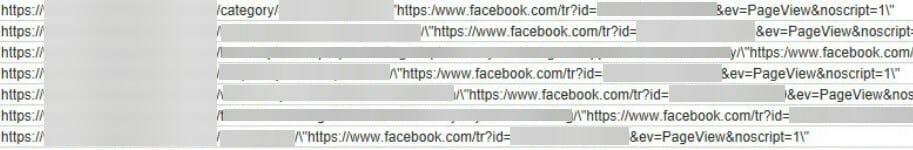 facebook-pixel-issue