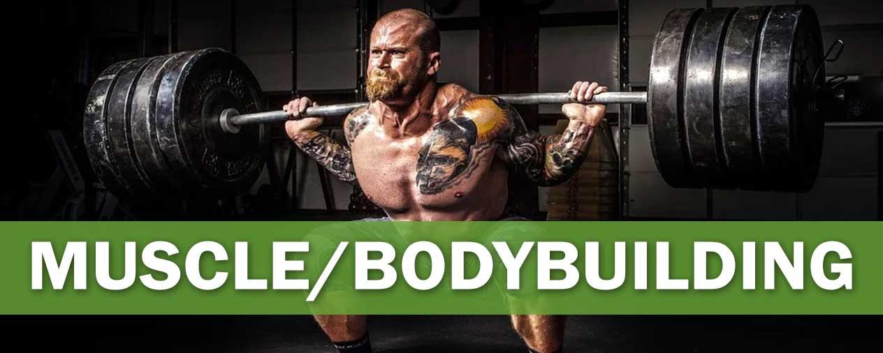 Muscle-Bodybuilding-niche-banner