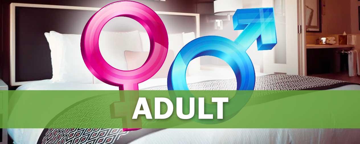 adult-niche-banner
