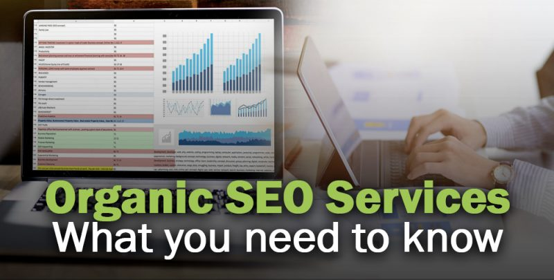 Organic SEO Consultant Services Cover-Image