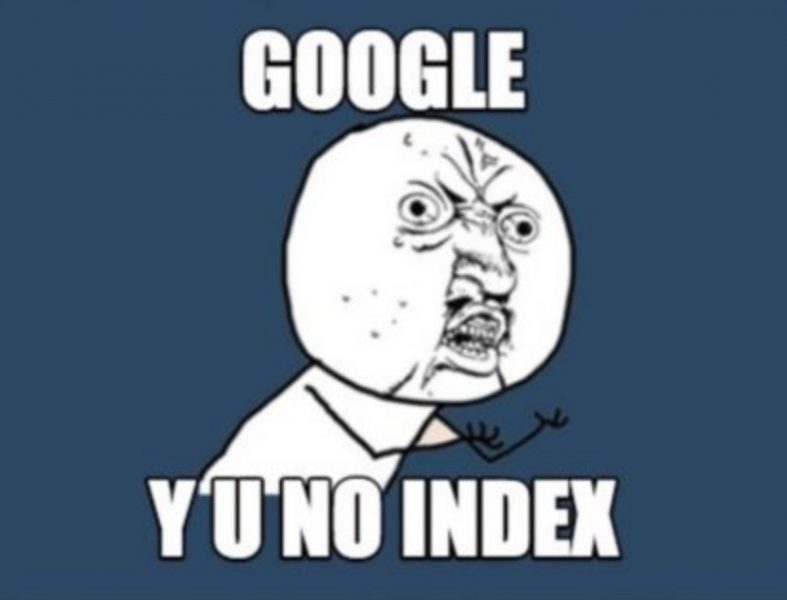 google indexing meme