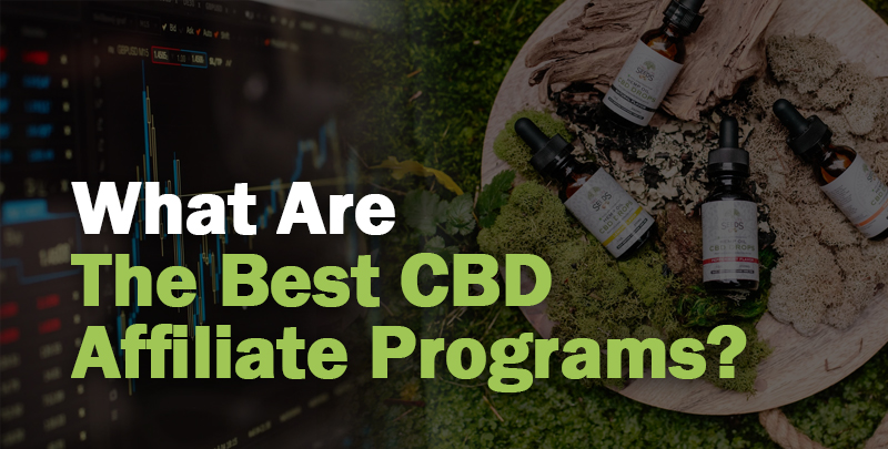 CBD Affiliates Cover Image