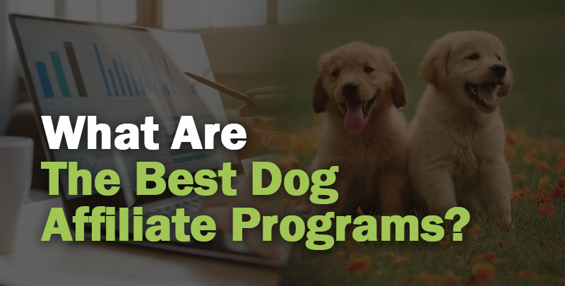 Dog Affiliate Programs Cover Photo