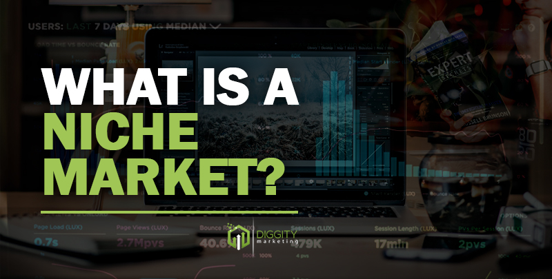 What is niche Market Cover Image
