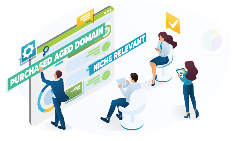 purchased aged domain project cashflow