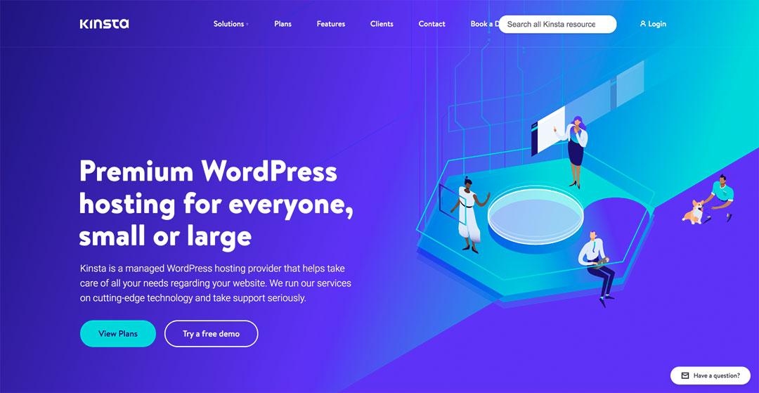 Kinsta Homepage