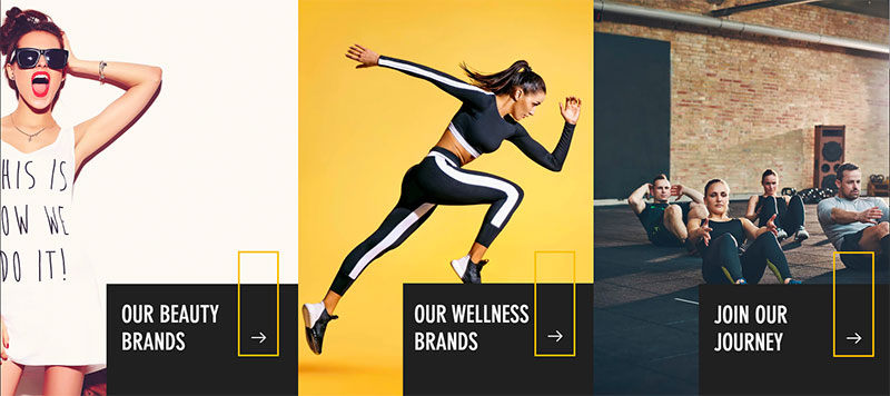 wolfson product brands